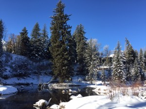 Hallam lake at ACES in Aspen